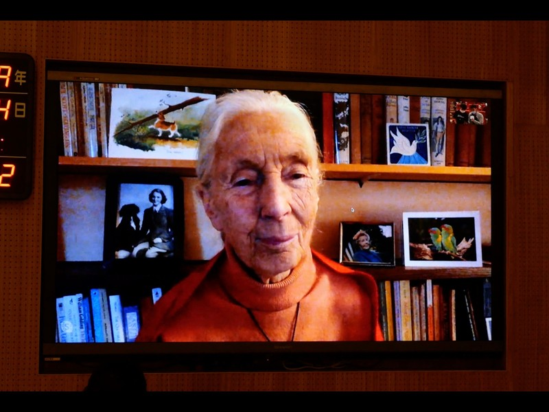 MOST Winter Speech Tang Prize Laureate Dr. Jane Goodall on Sustainable Development Post-pandemic
